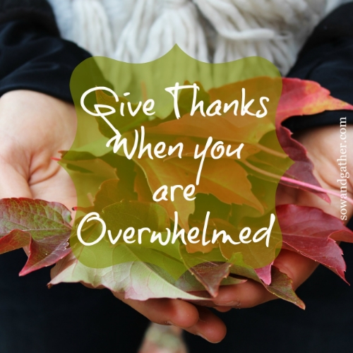 give-thanks-when-you-are-overwhelmed.jpg