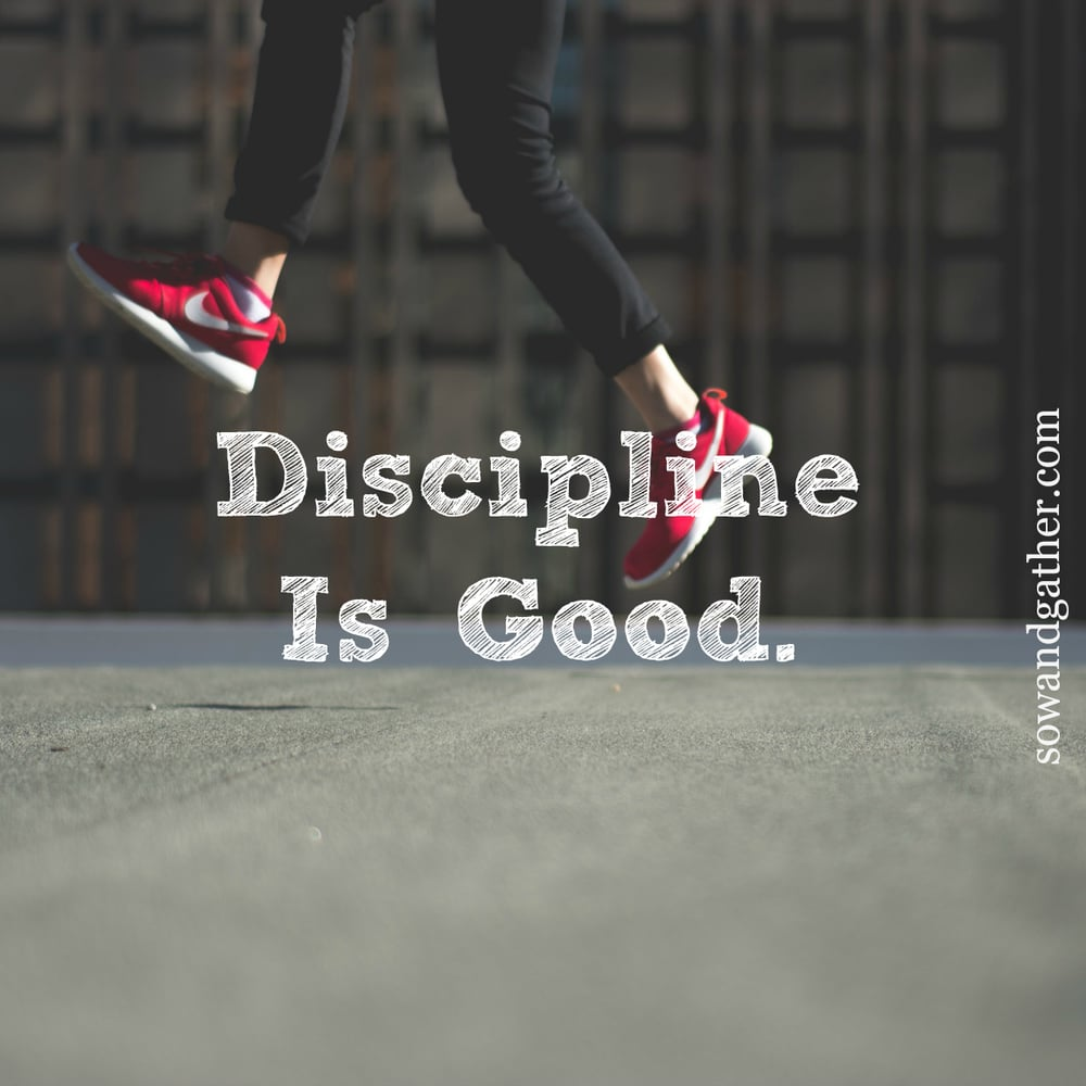Discipline-Is-Good- Hebrews 12:11 - sowandgather.com