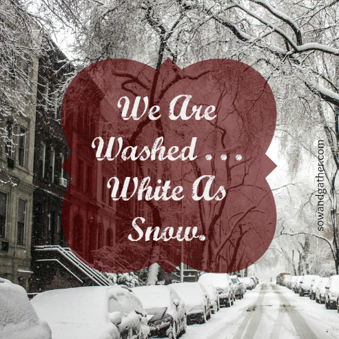we-are-washed-white-as-snow-sowandgather.com