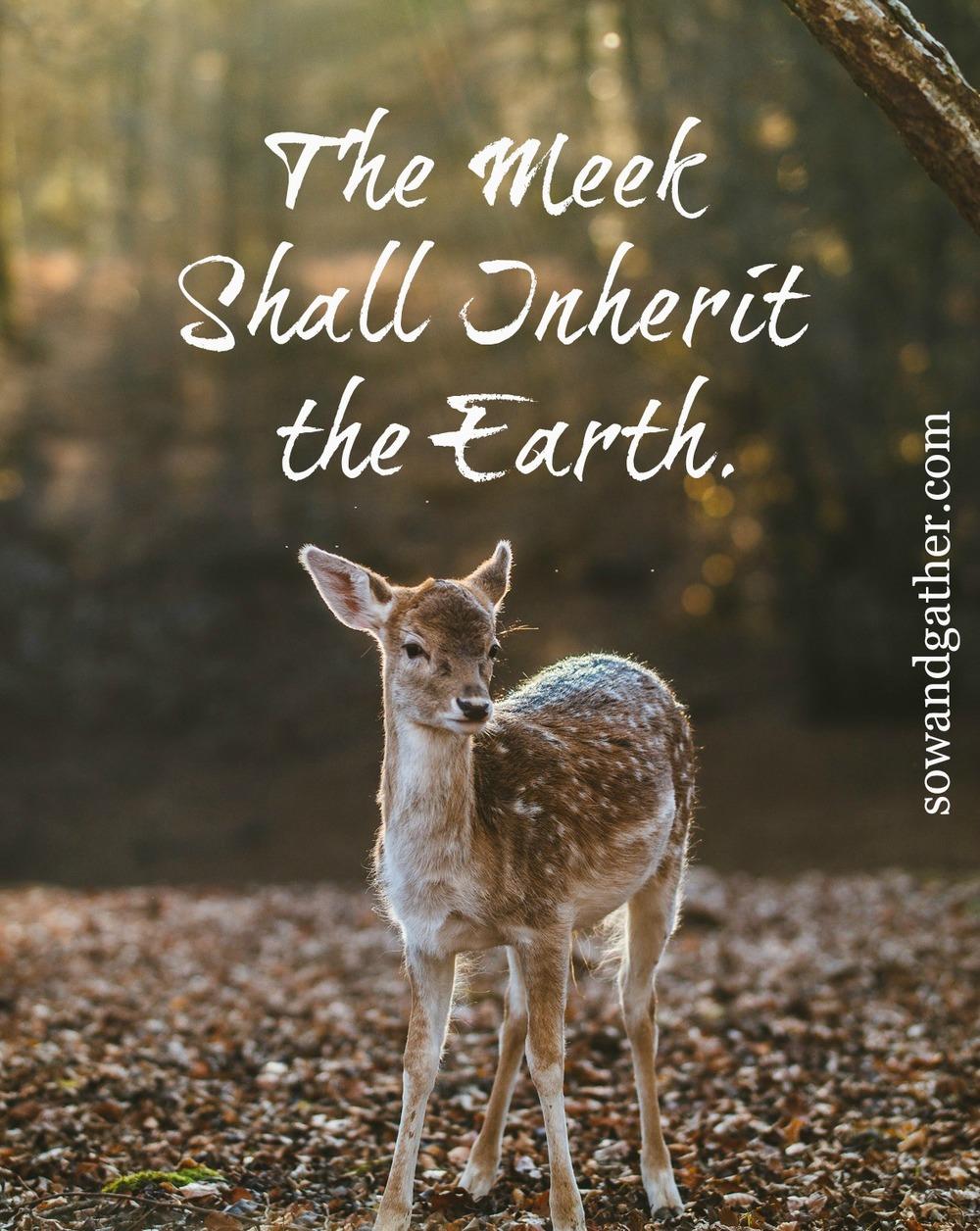 The Meek Shall Inherit The Earth #sowandgather sowandgather.com