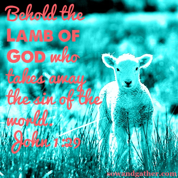"The next day he saw Jesus coming to him and said, ?Behold, the Lamb of God who takes away the sin of the world!""  John 1:29 sowandgather.com #sowandgather"