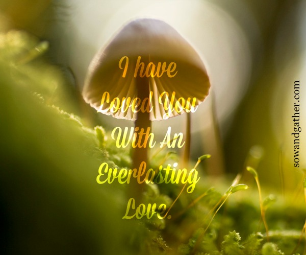 I-have-loved-you-with-an-everlasting-love sowandgather #sowandgather #transformation