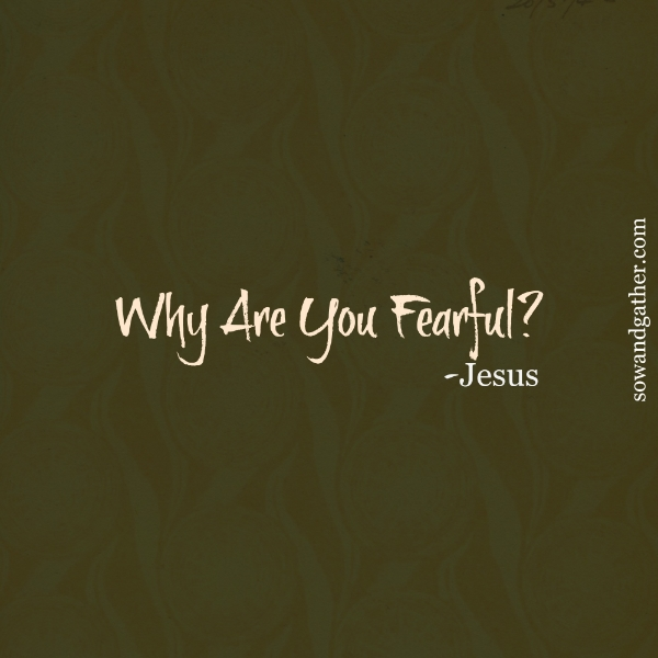Why-Are-You-Fearful #sowandgather #transformation