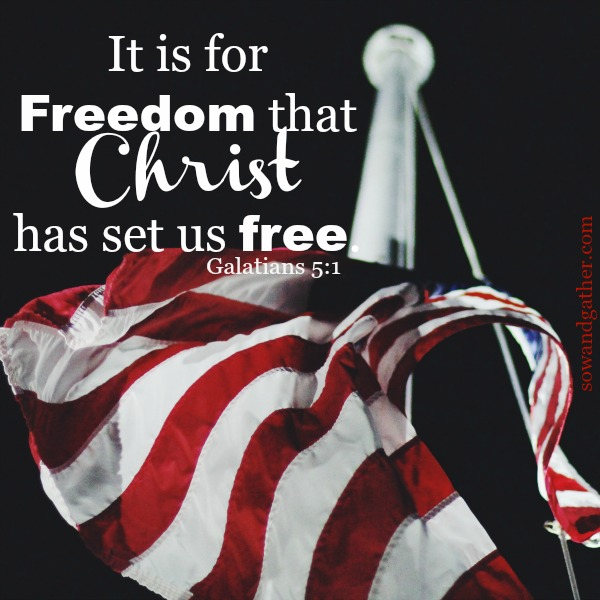 #freedom #sowandgather #july4 It is for freedom that Christ has set us free. Galatians 5:1
