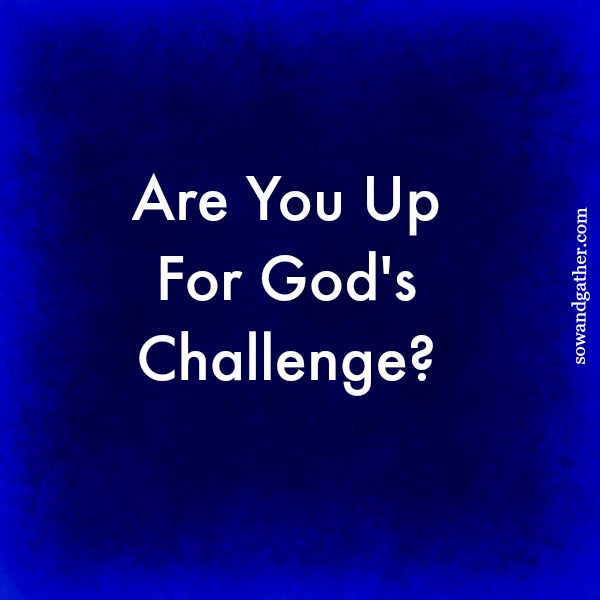 Are You Up For God's Challenge? #conversationswithgod #sowandgather