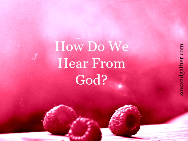 How Do We Hear From God? #sowandgather