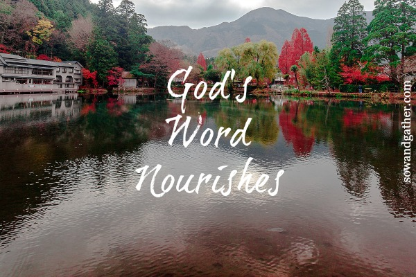 God's Word Nourishes #sowandgather #newbeginnings