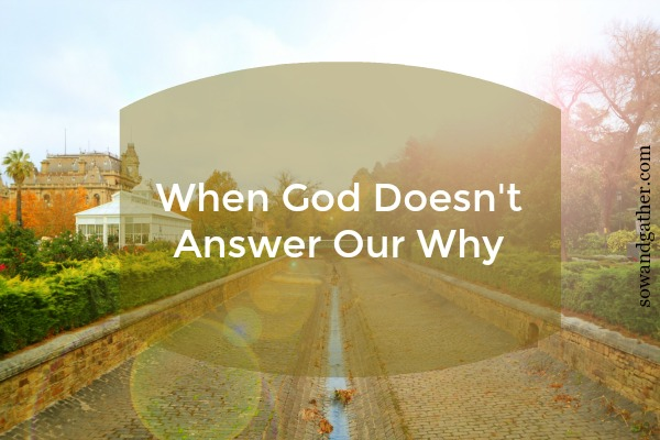 #sowandgather When God Doesn't Answer Our Why #healing