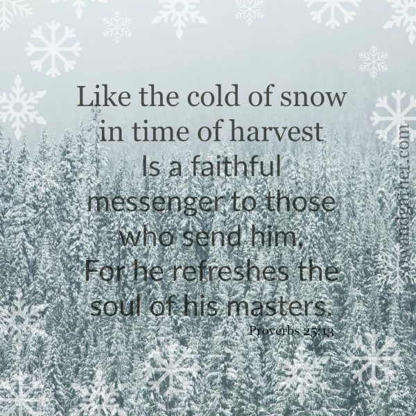Proverbs 25:13 #sowandgather #snow #faithful #refreshing