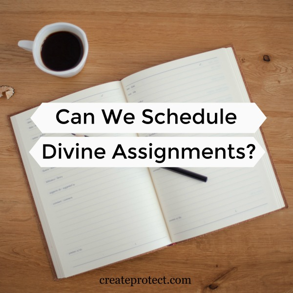#sowandgather Can-We-Schedule-Divine-Assignments #newyear #newbeginnings