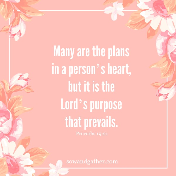 #sowandgather Many are the plans in a person's heart, but it is the Lord's purpose that prevails. Proverbs 19:21