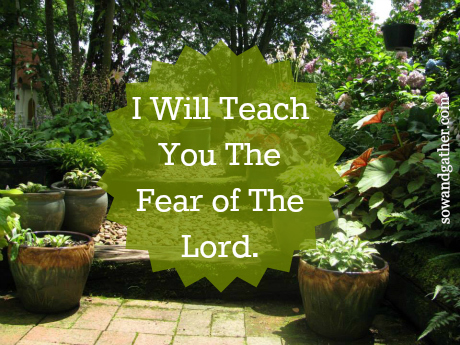 2.4.16 I Will Teach You The Fear Of The Lord Sowandgather.jpg