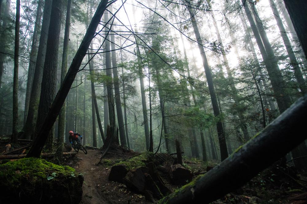 Photo credit: Robin Munshaw. Rider: Loam Coffee Ambassador Cooper Quinn