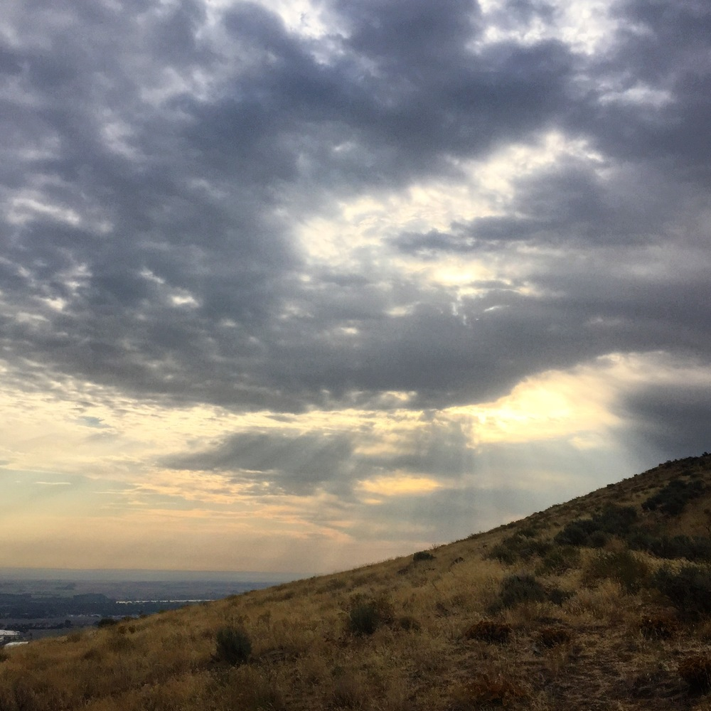 sunrays + sagelands, Columbia Basin 2015