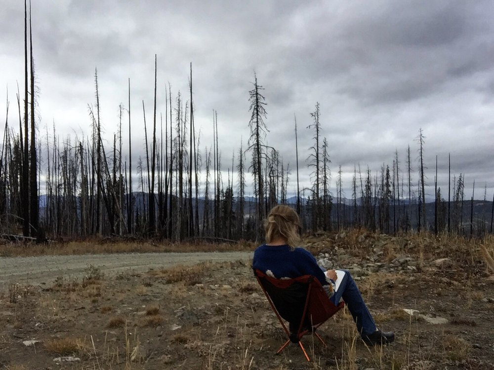 always writing, Okanogan Highlands, Autumn 2015