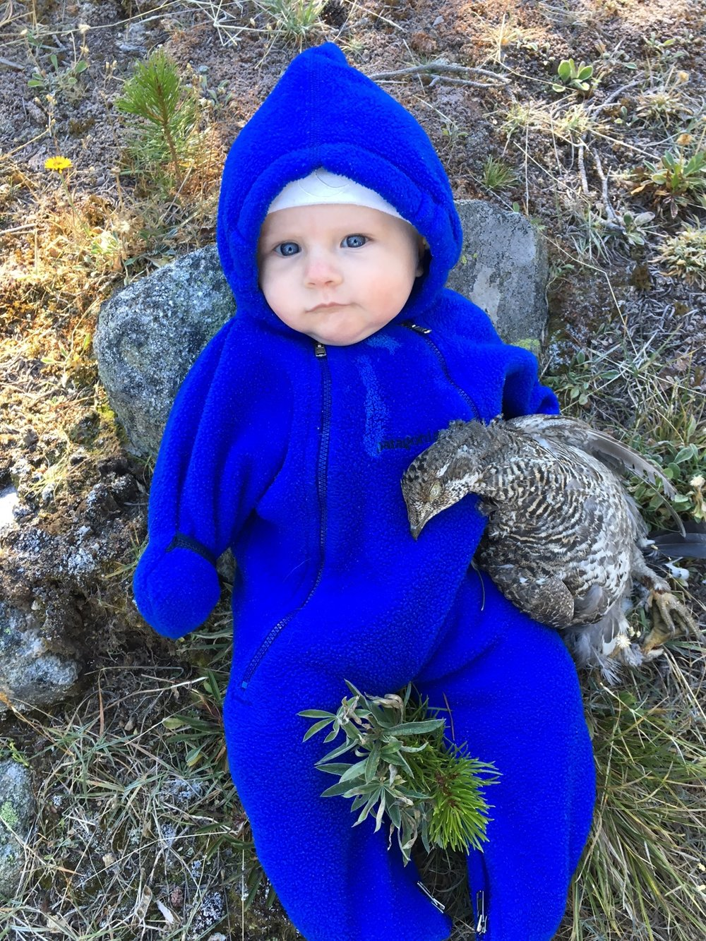 my first child and my first bird, Autumn 2016