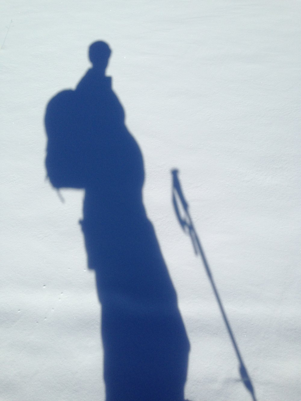 the author's shadow while skiing in Crested Butte 6 months pregnant