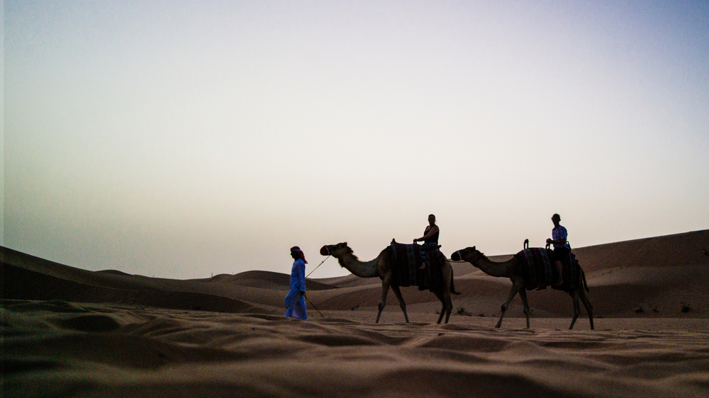 If you're not into bird sports, you can be treated to a leisurely camel ride through the landscape...