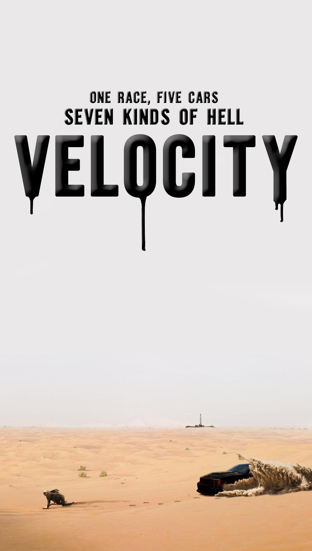 velocity concept poster.jpg