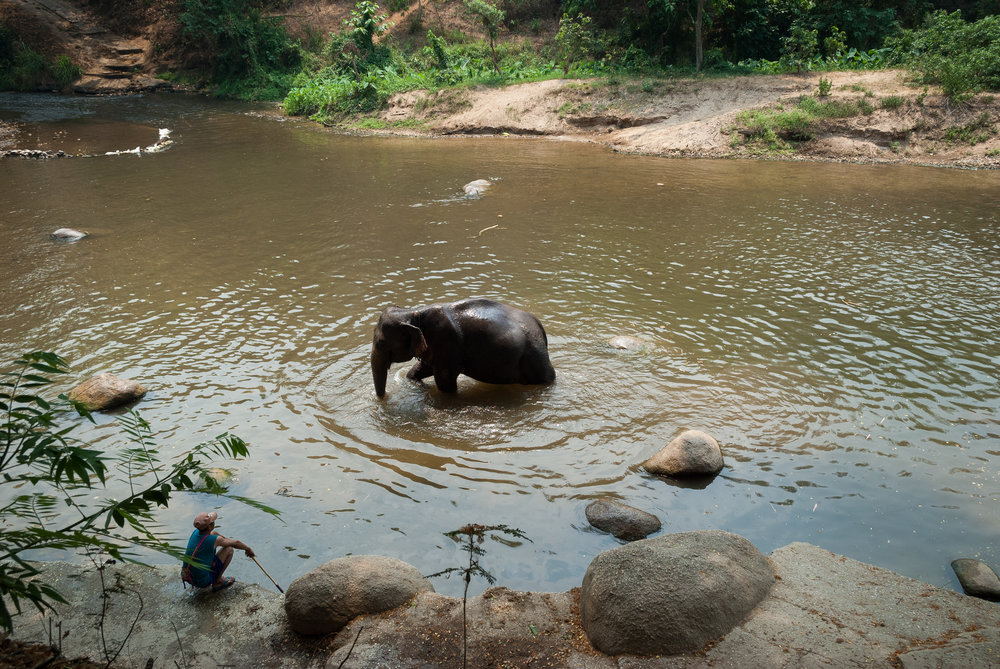Time for a bath in Chiang Mai, Thailand