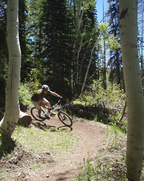 See he does ride a bike, Allister Worrall, railing a Deer Valley berm on a... Goose?