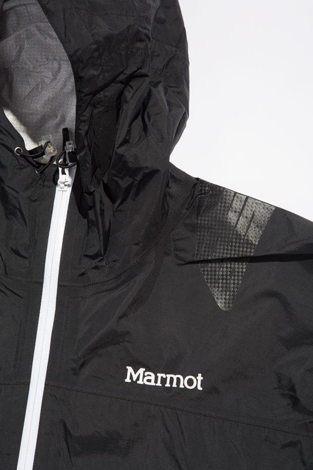 marmot-shoulder