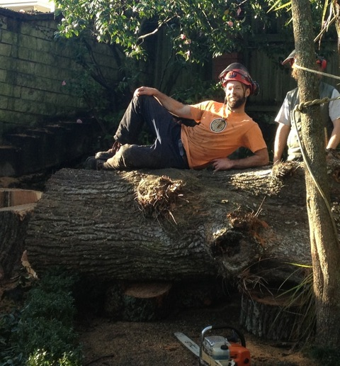 Jeff's pretty handy with a chainsaw too.