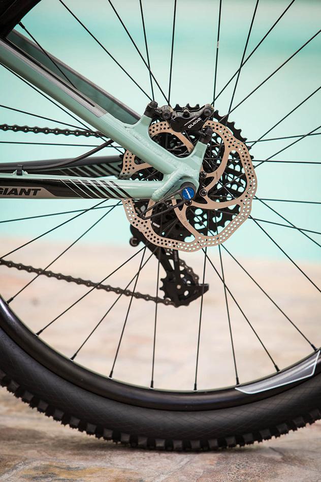 giant bikes 2015-9338
