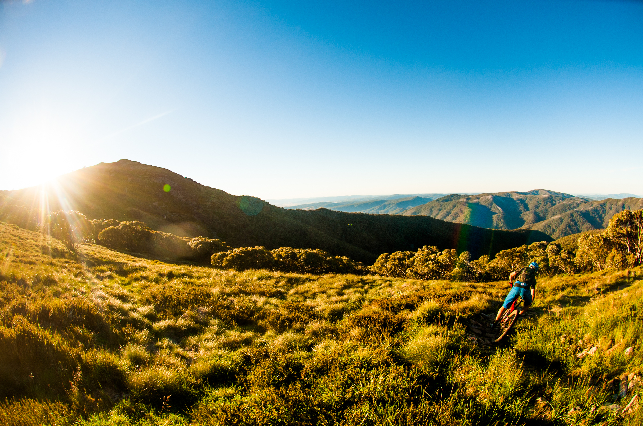 MTB Mt Buller. Photo (c) Damian Breach Photography