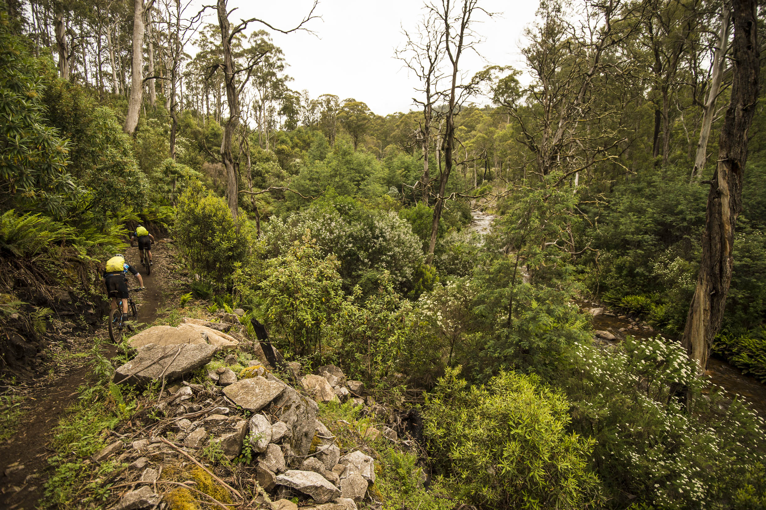 Sections-of-the-Australian-Alpine-Epic-follow-the-Delatite-River-photo-Mt-Buller-Andrew-Railton