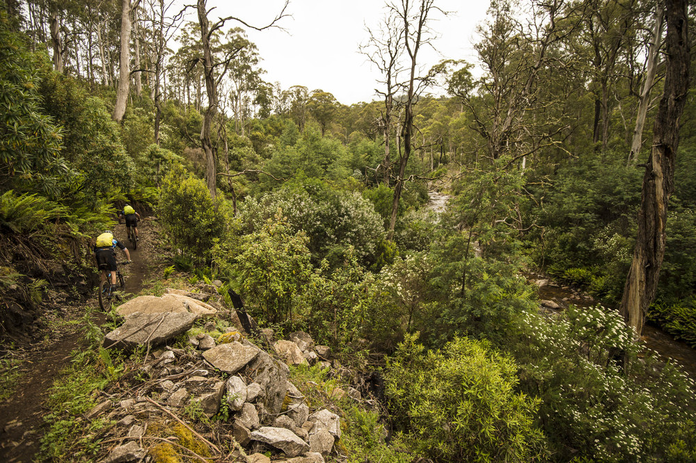 Sections of the Australian Alpine Epic follow the Delatite River - photo Mt Buller & Andrew Railton