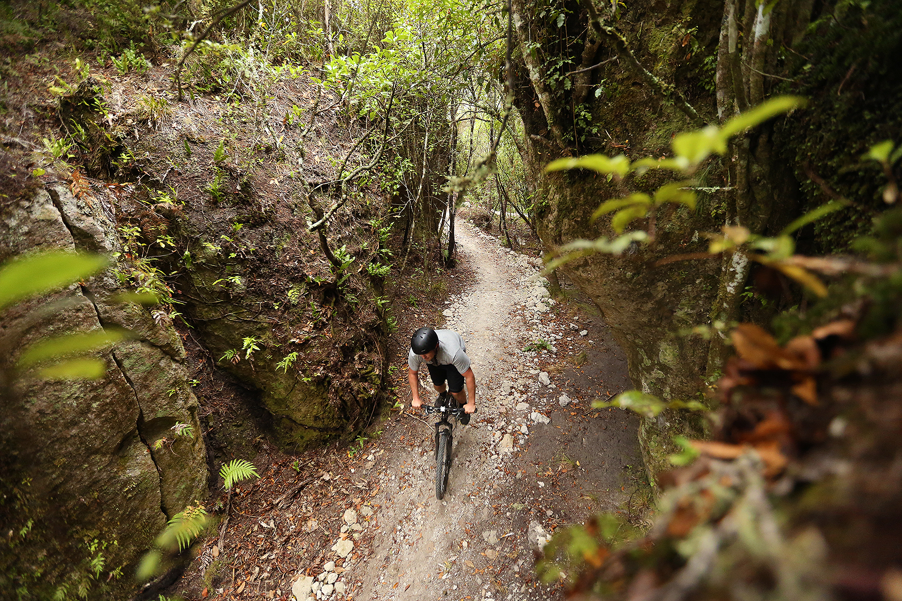 Waihora_Mountain_Bike_Trail_Image_1U0A0642