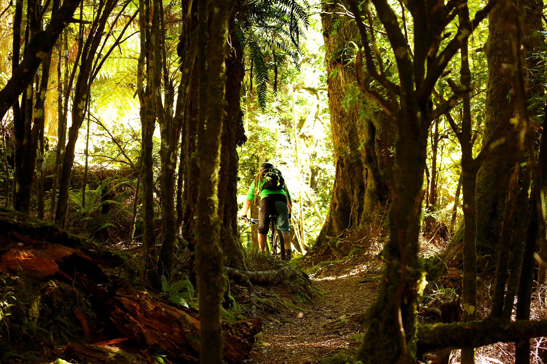 Te_Iringa_Mountain_Bike_Trail_Image_1U0A8768