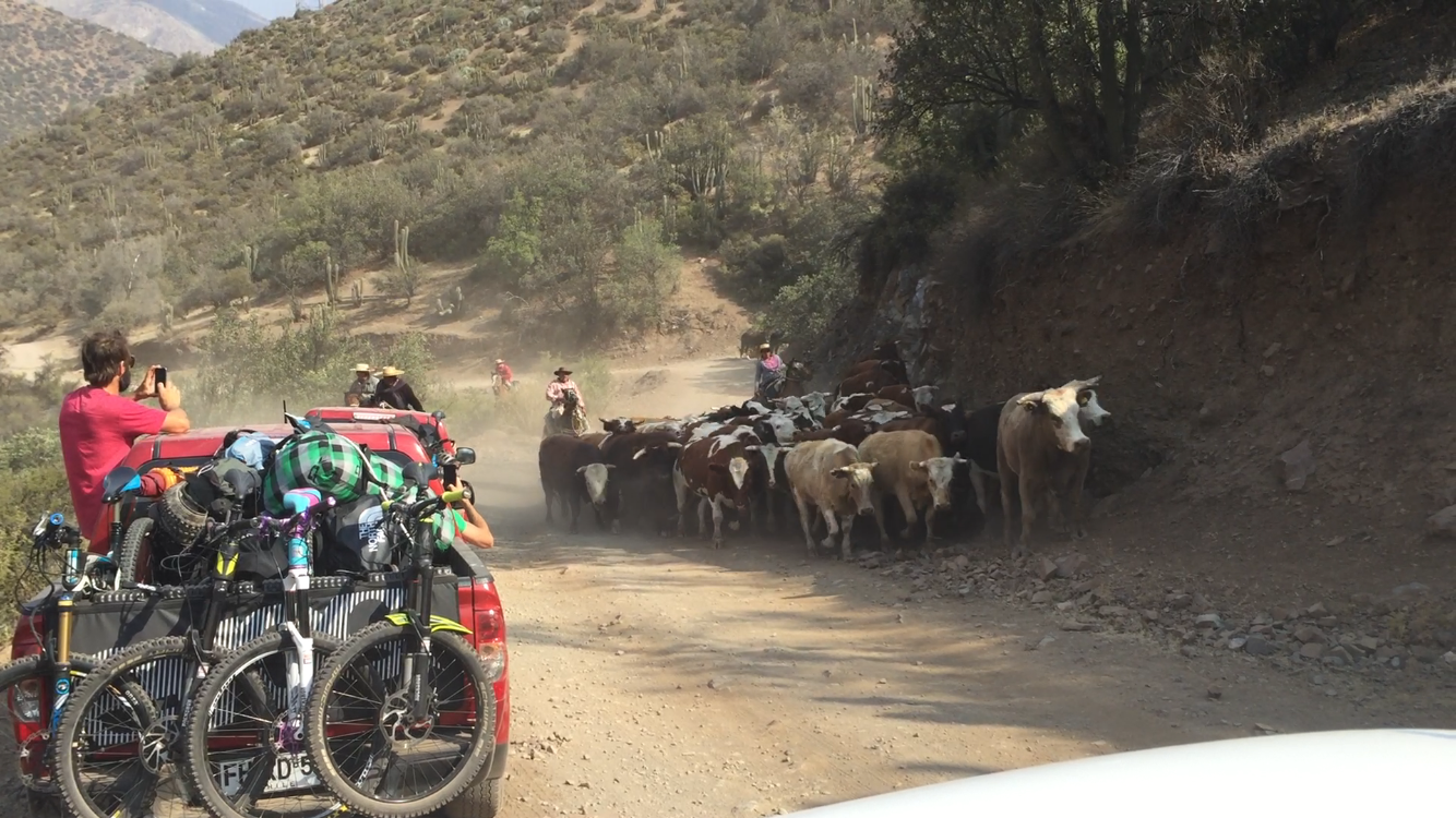 On our drive to camp Antawaya we had to pull over to let the local Chilean cowboys by. The rugged terrain didn't make this look like an easy task.