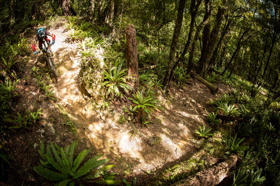 NZ-Enduro-Day-3-9581