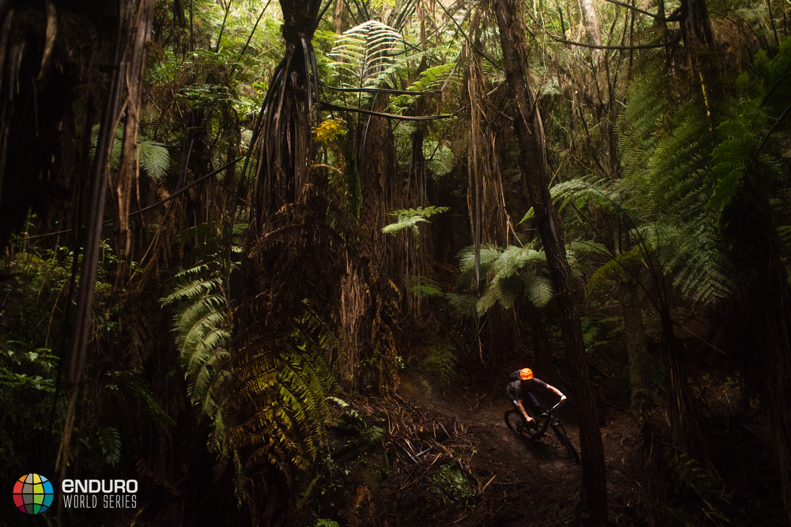 Chris Ball on stage 3. EWS 1 2015, Rotorua, New Zealand. Photo by Matt Wreagg.