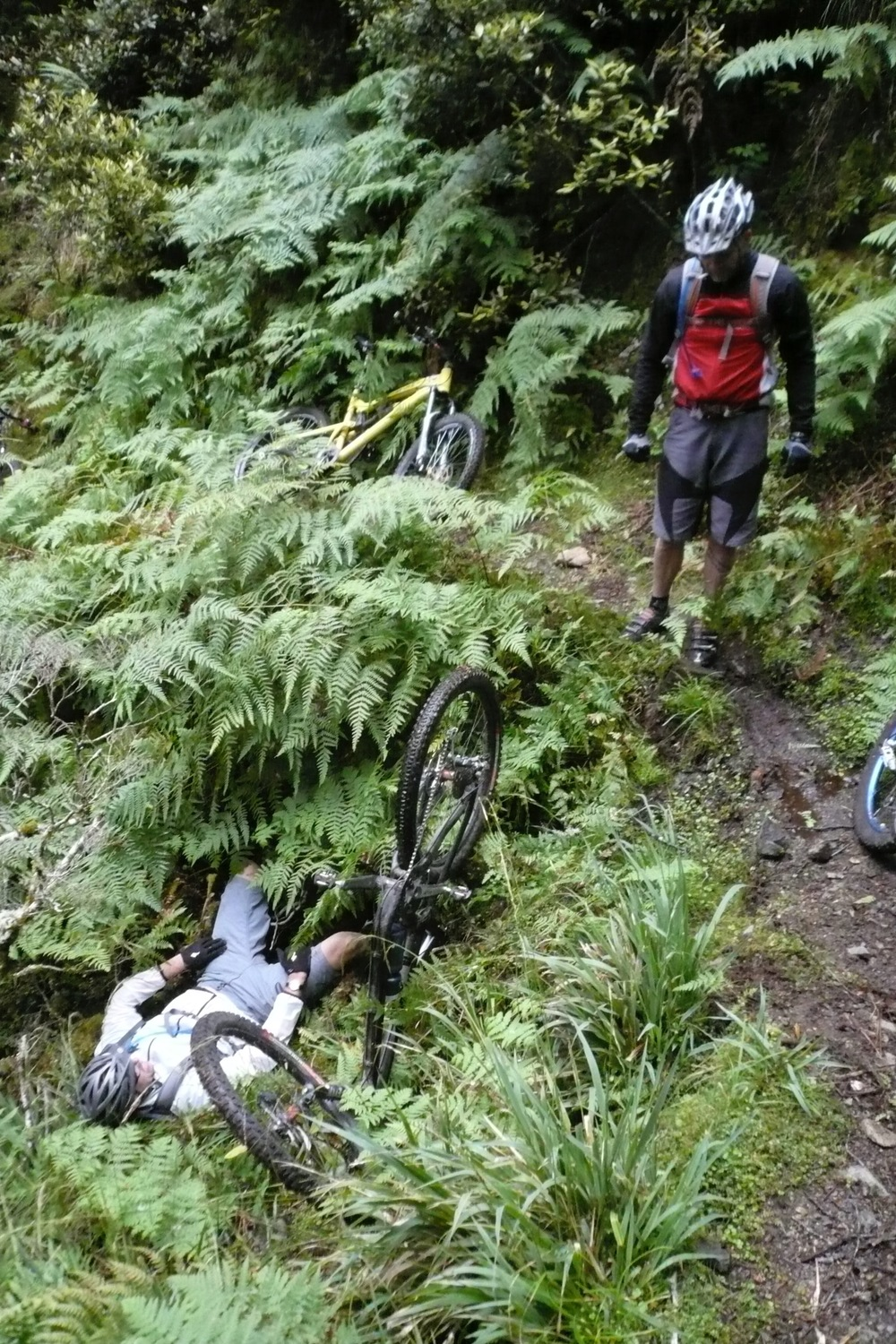 Some muppet falls into a hole at walking pace, Ti Iringa track.