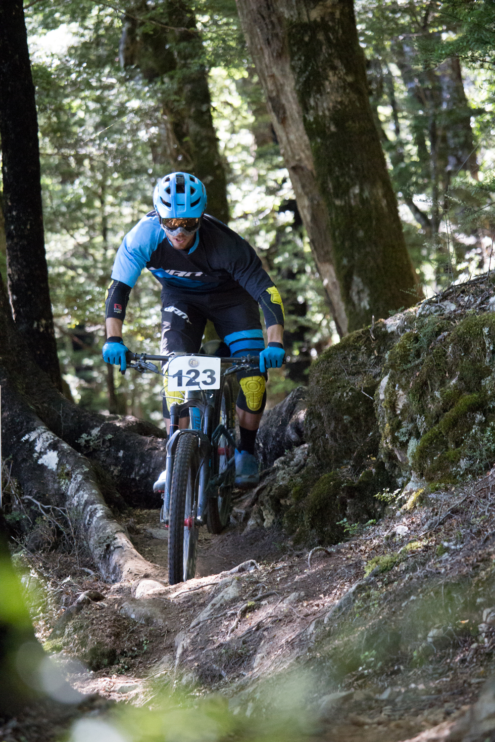 Joe Nation