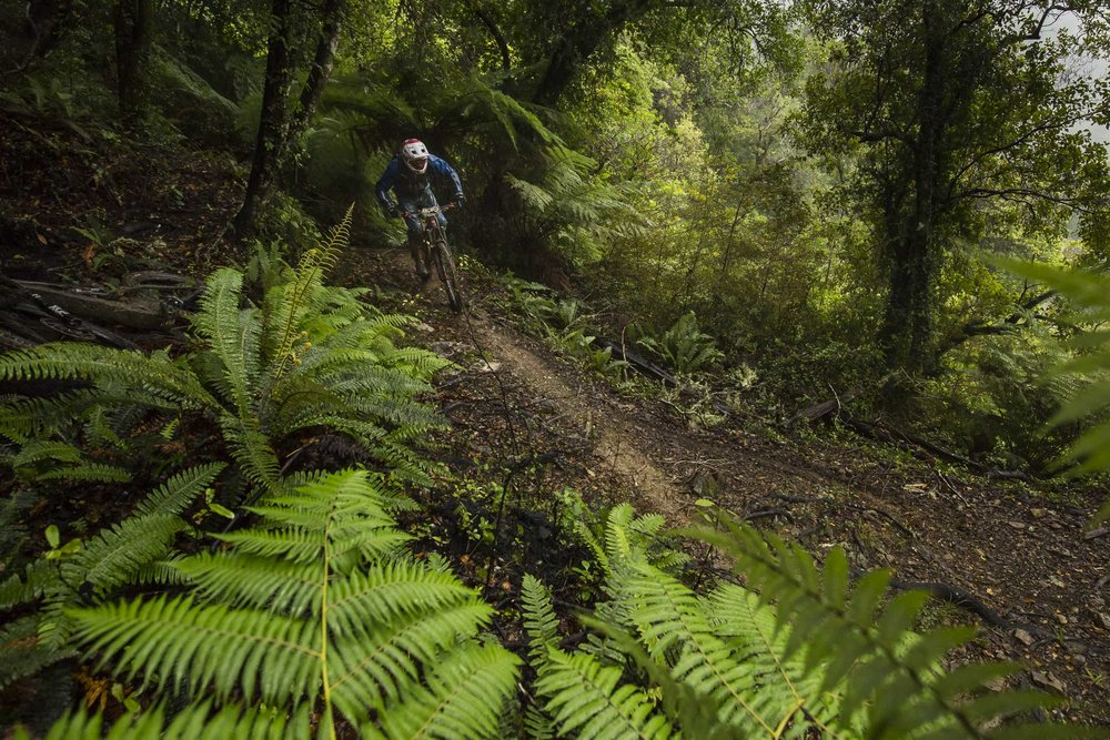 Jamie Nicoll will have ridden these trails a few times over the years