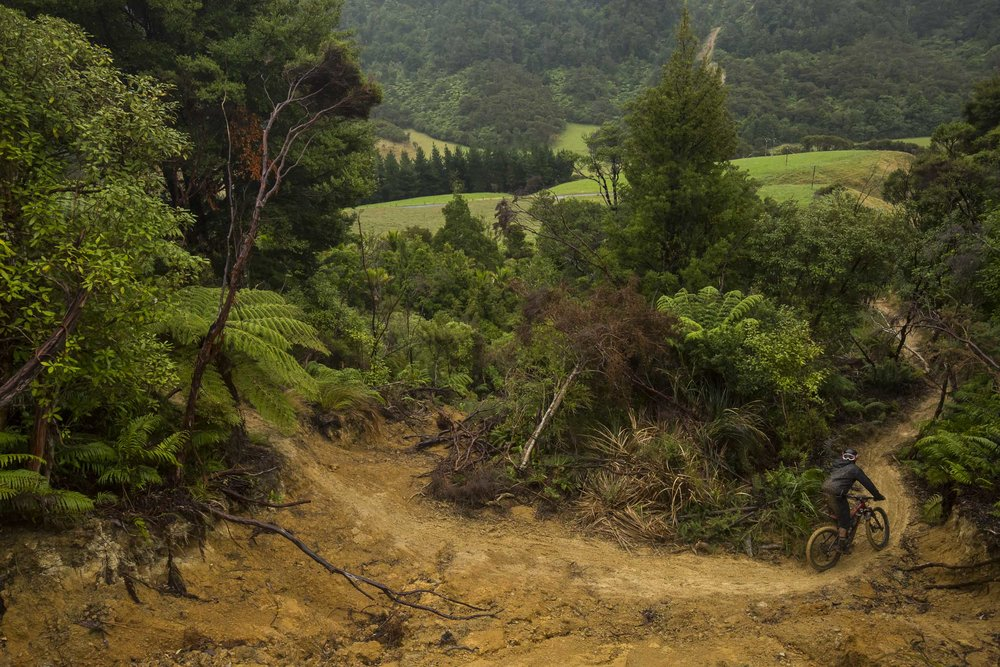 NK_NZ_Enduro_Day2-18.jpg