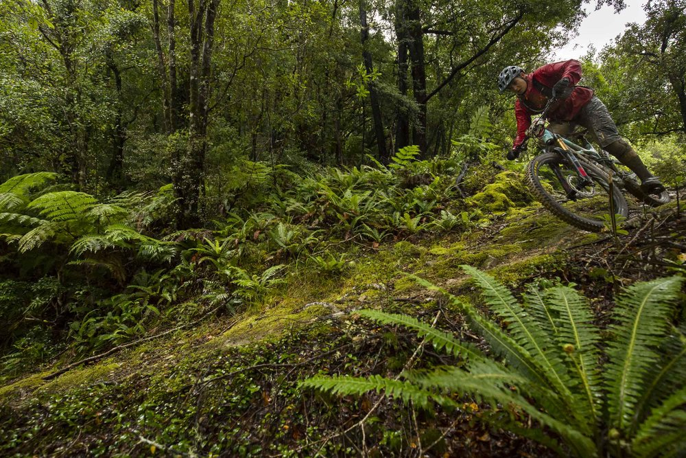 NK_NZ_Enduro_Day2-50.jpg