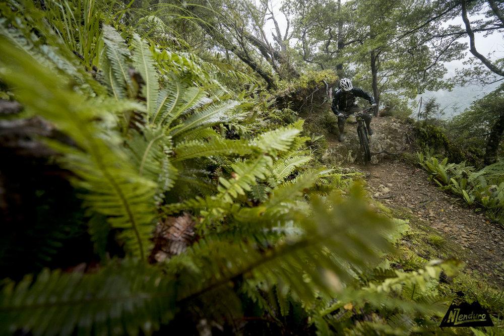 NZENDURO_Saturday-9927.JPG
