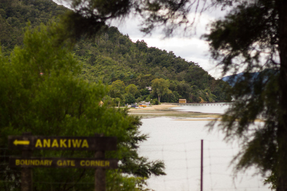 The Queen Charlotte track terminates and we ride The Link Track to Havelock