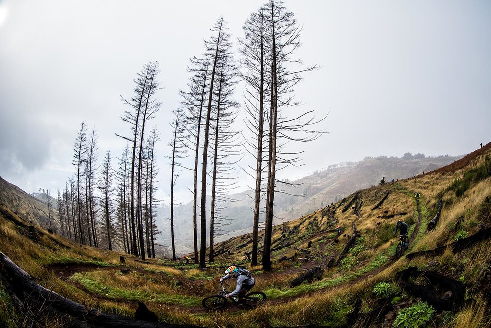 Some of Madeira's endless trails network