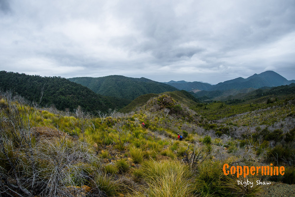 coppermine spoke-15.jpg