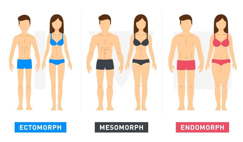 Body types ebylife.jpg