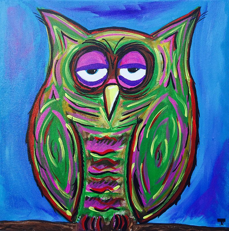 Bob The Funky Owl by Jesse K.