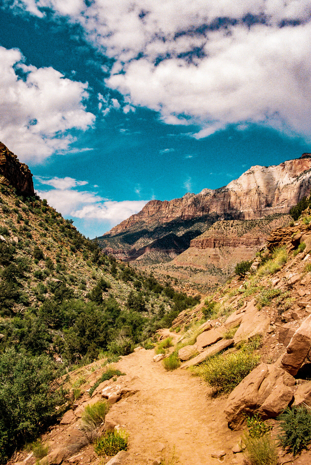 A 35mm film shot of The Watchman Trail