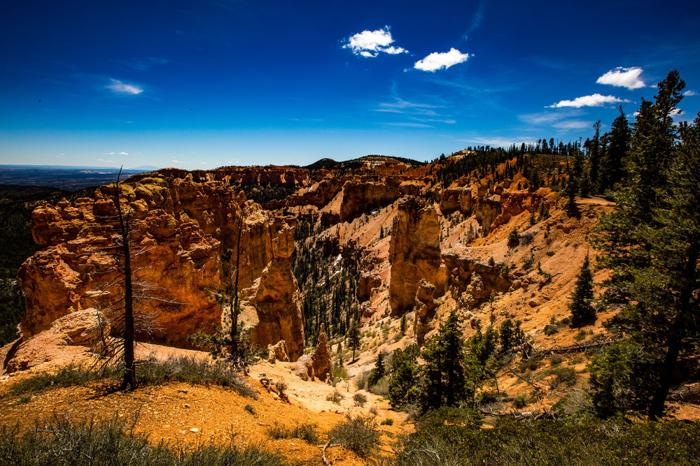 The view at Agua Canyon on the descent towards Bryce Amphitheatre