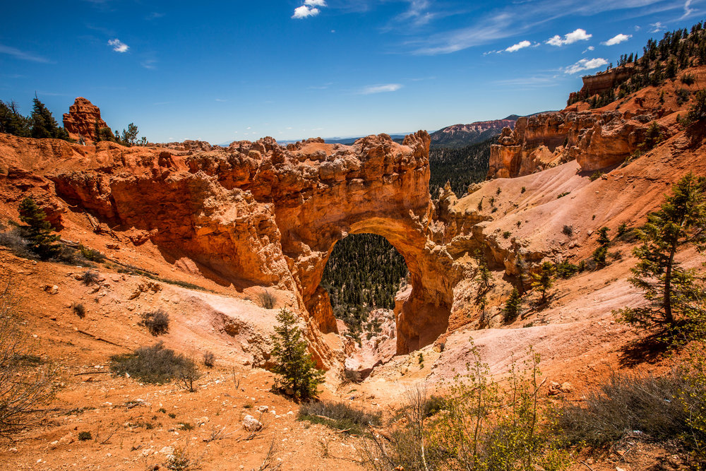 This arched rock formation is called Natural Bridge and is one of the most popular stops on the journey from Rainbow Point to Bryce Amphitheater